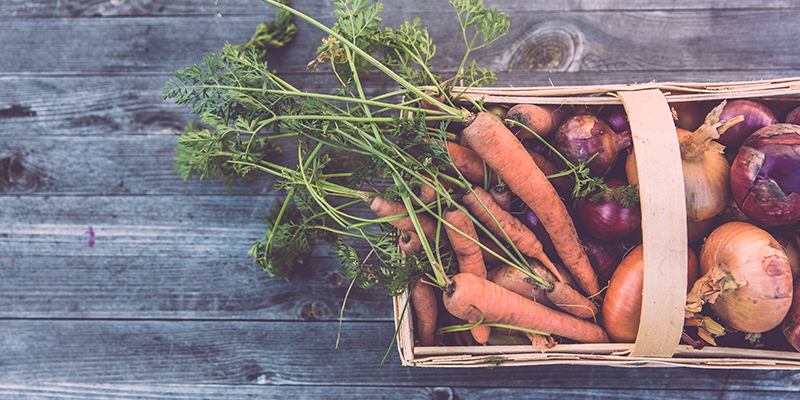 Apuesta por una dieta saludable y... sostenible