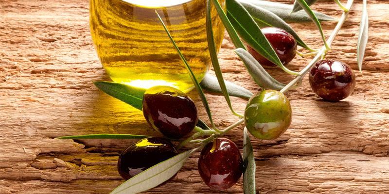 Aceitunas y aceite, el oro de nuestra tierra