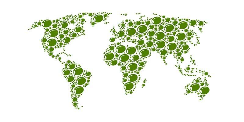 Recetas con aceitunas por el mundo