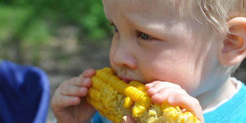 Alimentación para niños con aceitunas Fragata